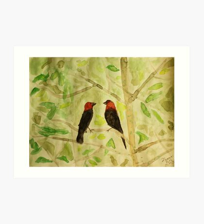 Brown Headed Cowbirds Art Print