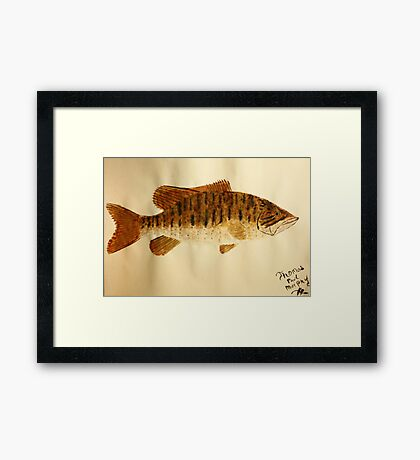 Smallmouth Bass Framed Print