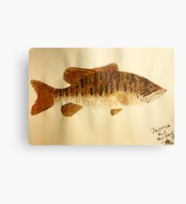 Smallmouth Bass Metal Print