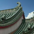 Dragon Design Roof by phil decocco