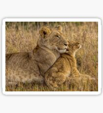 Lion Baby with Mother Sticker