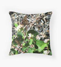 Eastern Oregon Butterflies Throw Pillow