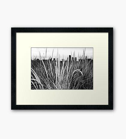 Through the Grass Gerahmtes Wandbild