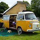 VW 9842 by Steve Woods
