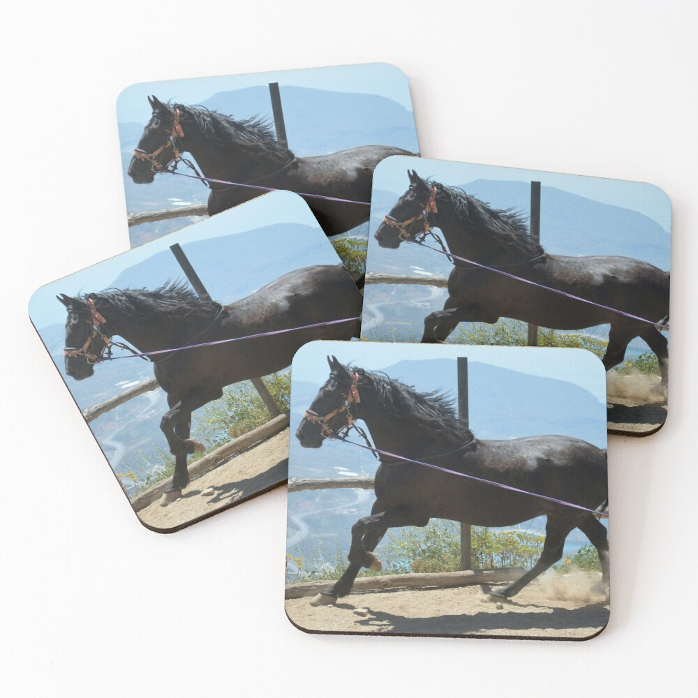 Coco in the corral Coasters (Set of 4)