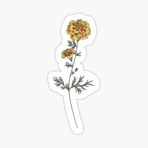 October Birth Month Flower | Marigold | Color Sticker