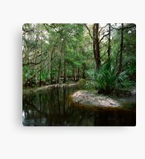 Parker Slough #3. Canvas Print