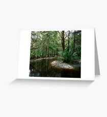 Parker Slough #3. Greeting Card