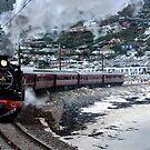 The steam train by fourthangel