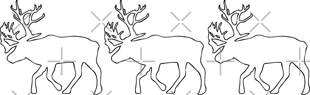 Caribous by Port-Stevens