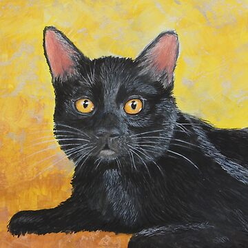 Reflections on a Black Cat by artbylorraine