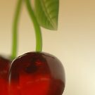 Cherries by Annie Lemay  Photography