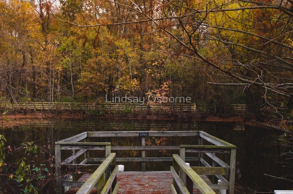 Untitled by Lindsay Osborne