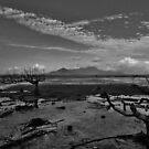 Coastal Mordor! by Sue Downey