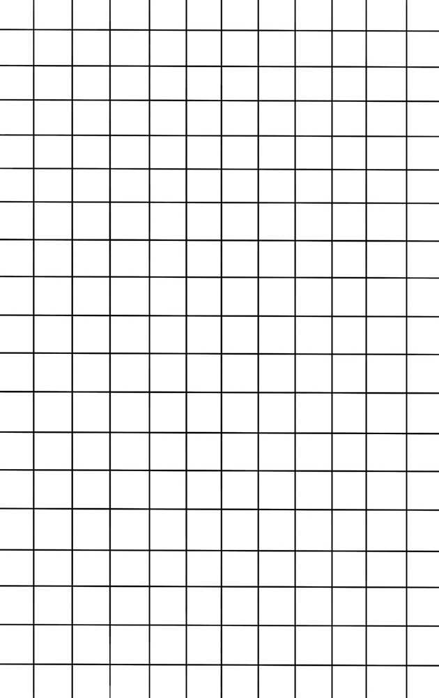 Black And White Grid by mkaythen