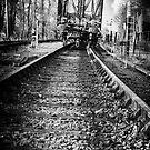 Dark train coming by Nikki Smith