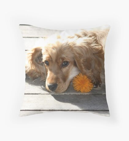 Jessie In The Morning Sunshine Throw Pillow