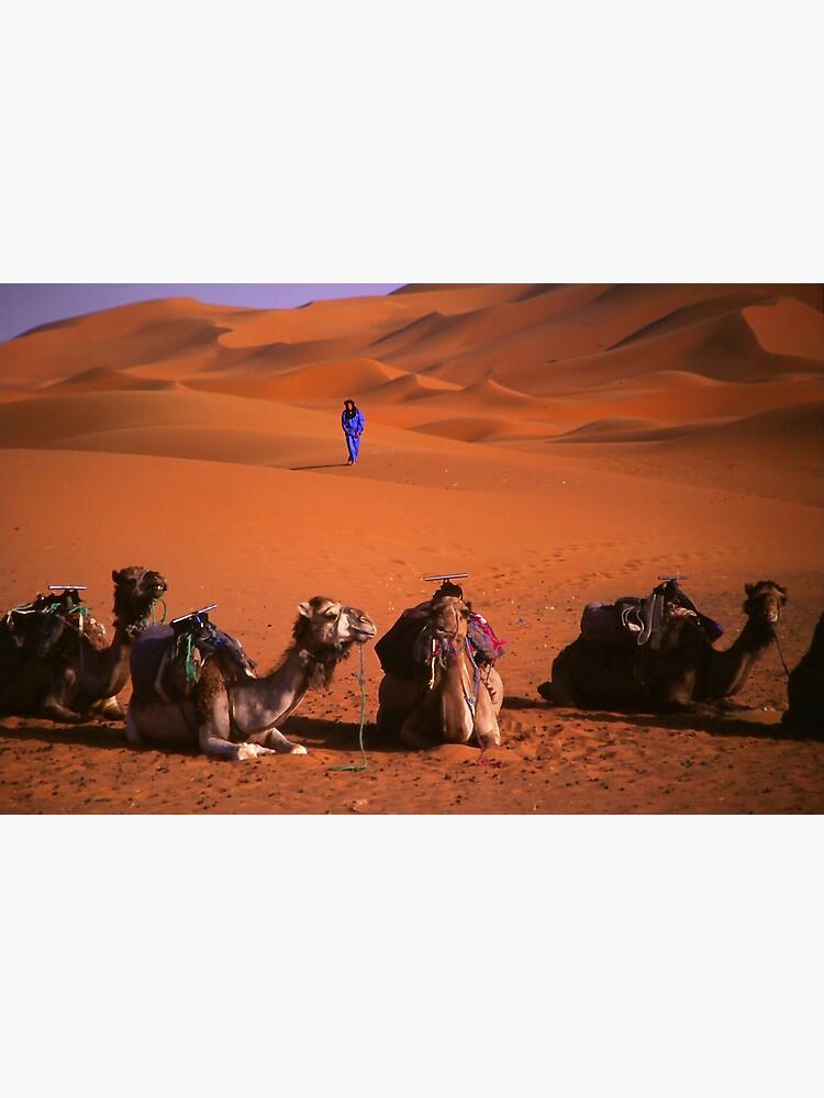 the sahara by alexsupertramp