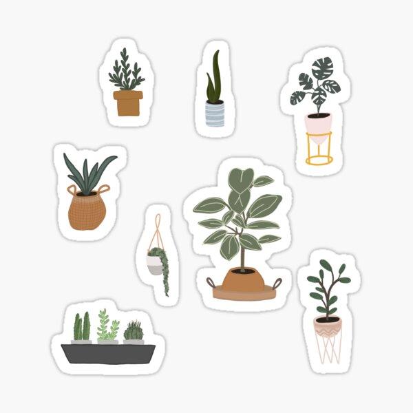 House Plant Sticker Pack Sticker