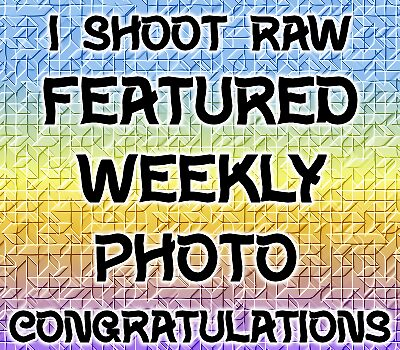 I Shoot Raw .. weekly featured photo by LoneAngel