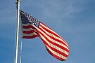 American Flag by ValeriesGallery