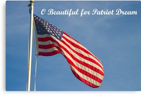 American Flag Patriot Dream  by ValeriesGallery