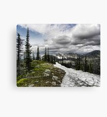 Montana Summer Canvas Print