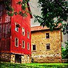 The Prallsville Mill # 3 by Debra Fedchin
