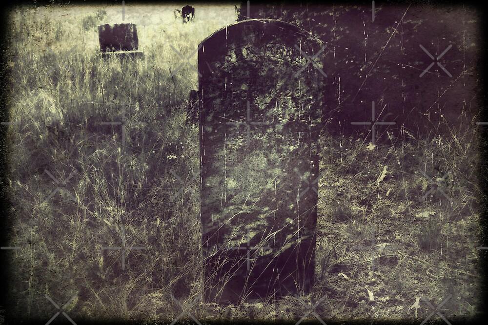 Forgotten by Scott Mitchell