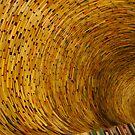 Spiral by Dinorah Imrie