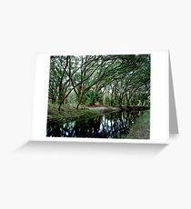 Parker Slough #4. Greeting Card