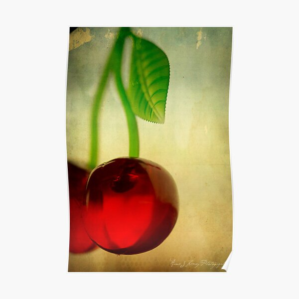 Vintage Cherries Poster