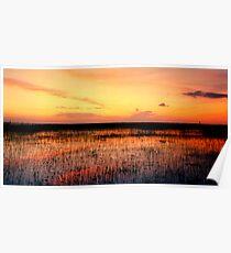 Sunset. East Lake Toho. Poster