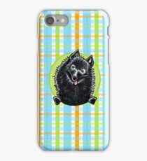 Schipperke Cute Carribean Plaid iPhone Case/Skin