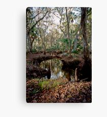 Parker Slough #8. Canvas Print