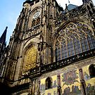 Prague Castle by dher5