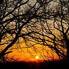 sunset #2 by ketut suwitra