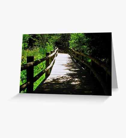 Nature Path © Greeting Card