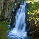 Waitui falls from above by Penny Smith