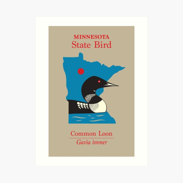Minnesota State Bird Poster Art Print