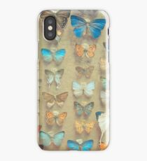 The Butterfly Collection II iPhone Case/Skin