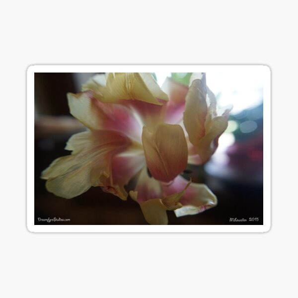 Tulip 3 Sticker
