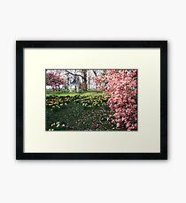 Spring at shaw nature reserve Framed Print