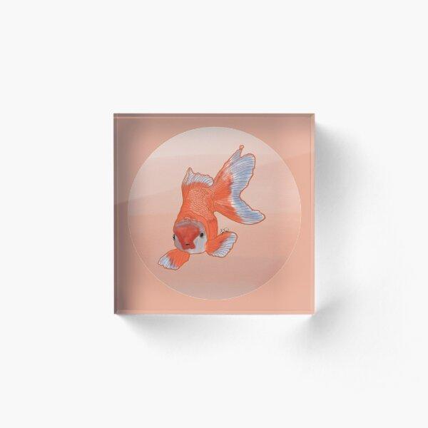 Goldfish Acrylic Block