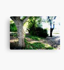 What you pass by but never see Canvas Print