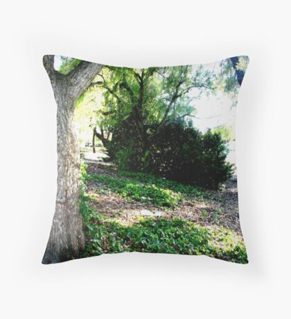 What you pass by but never see Throw Pillow