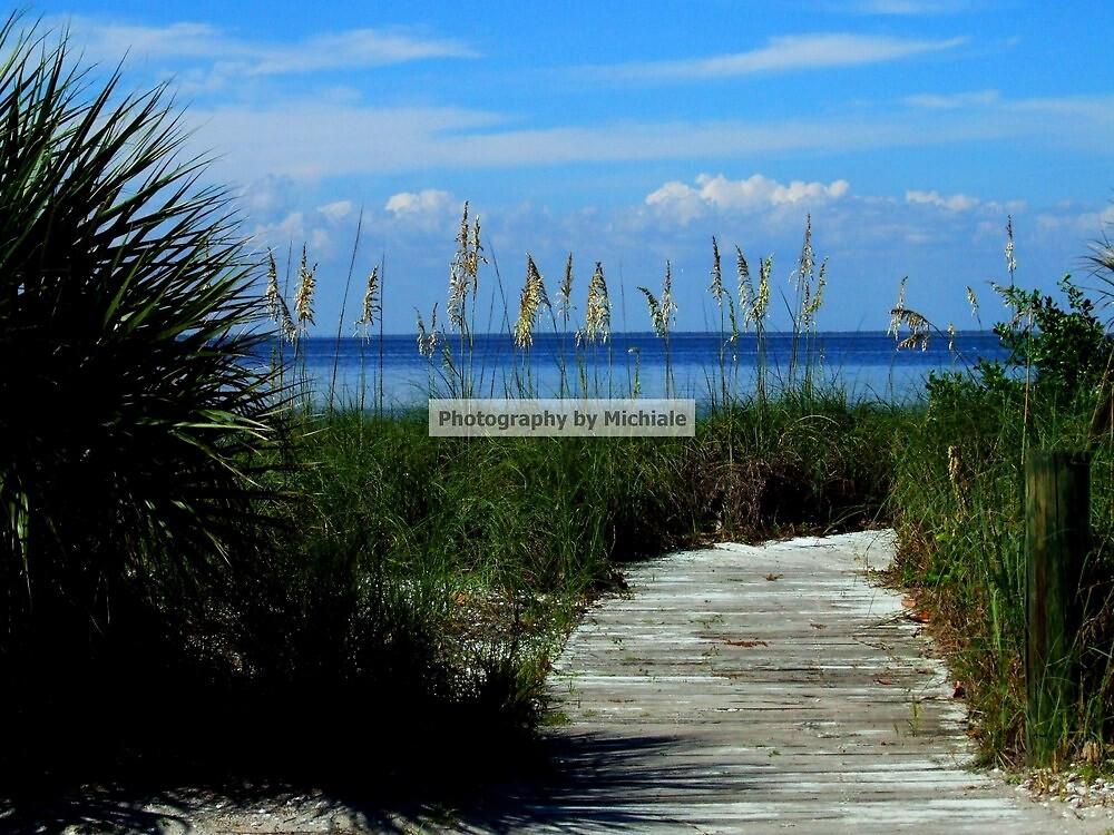 Boardwalk on the Beach by Michiale