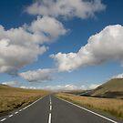 Brecon Beacons National Park, Wales by Tsitra