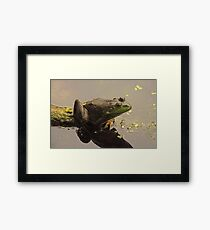 Frog June Framed Print