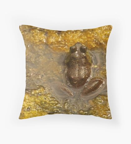 Frog July Throw Pillow